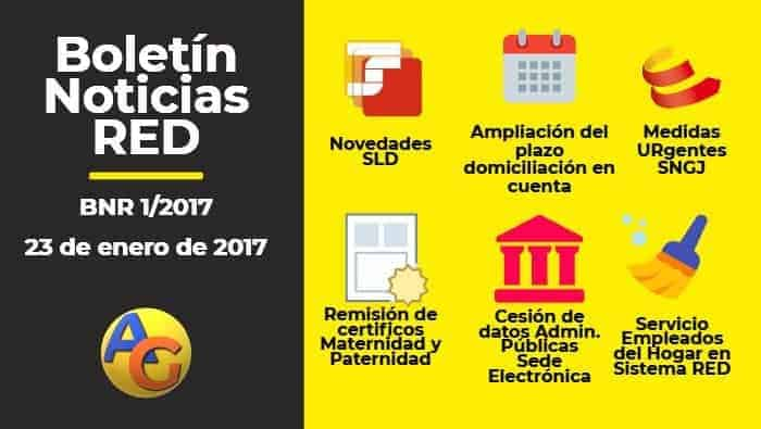 Resumen Boletín Noticias RED 01-2017