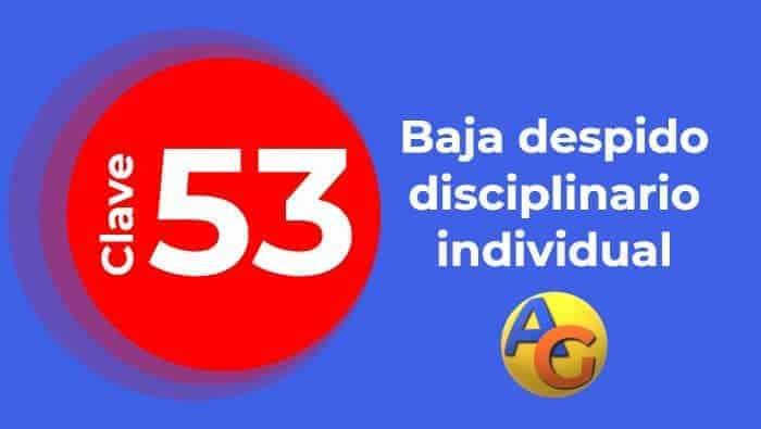 Baja despido disciplinario individual