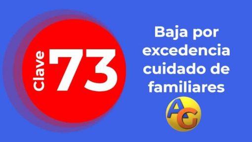 Baja por excedencia cuidado de familiares clave 73