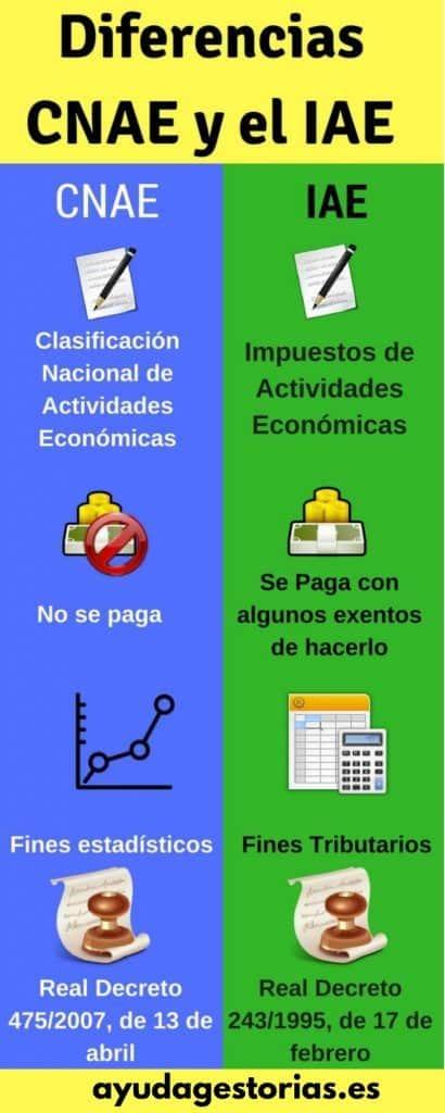 Diferencia IAE CNAE infografía