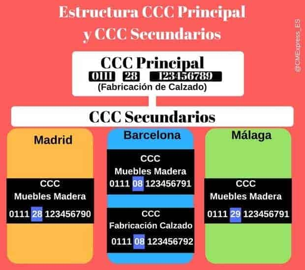 Estructura CCC principal y CCC secundario