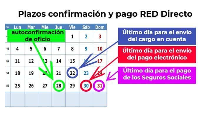 Plazos confirmación RED Directo