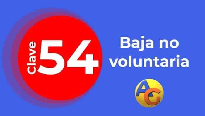 Baja No voluntaria por otras causas