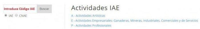 Conversor IAE CNAE