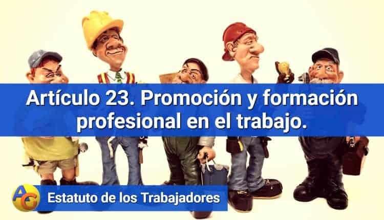 Artículo 23. Promoción y formación profesional en el trabajo