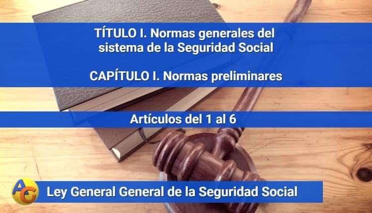 CAPÍTULO I. Normas preliminares LGSS