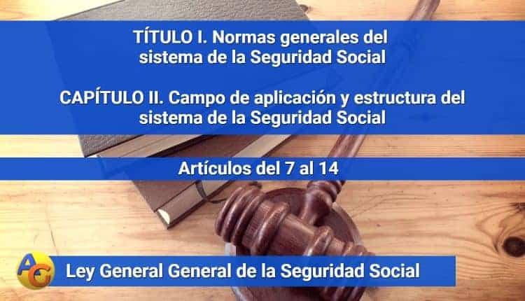 CAPÍTULO II. Campo de aplicación y estructura del sistema de la Seguridad Social