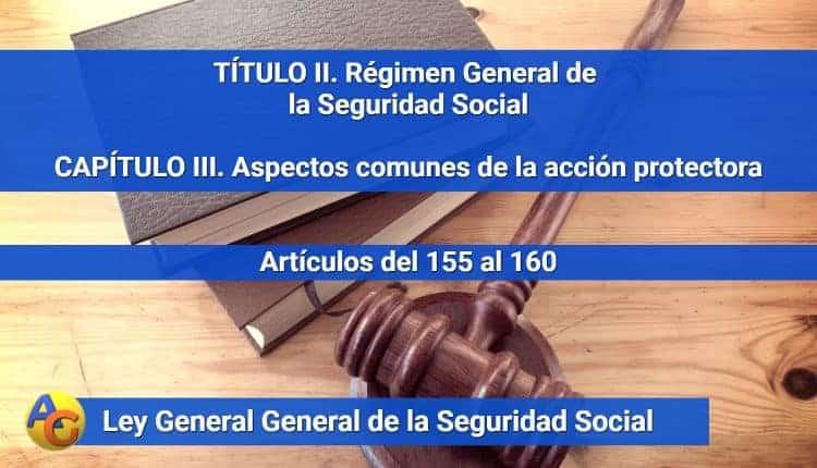 CAPÍTULO III. Aspectos comunes de la acción protectora