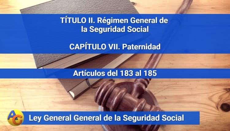 CAPÍTULO VII. Paternidad