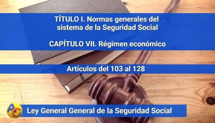 CAPÍTULO VII. Régimen económico
